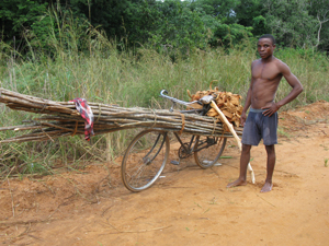 Image: Overloaded bicycles were the workhorses in Mozambique.