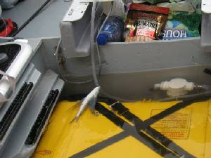 Image: It rains so much, it fills the footwell.  Note the dead flying fish!