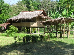 Image: Traditional huts were built using natural materials like coconut tree leaves.  Built off the ground, the huts would remain dry, and let the breeze carry the heat away.